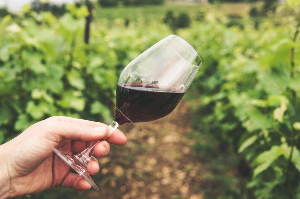 Hvilken temperatur skal vin have?